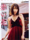 小野真弓 写真集 「赤い花」