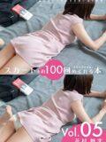 スカートを約100回めくれる本 Vol.05